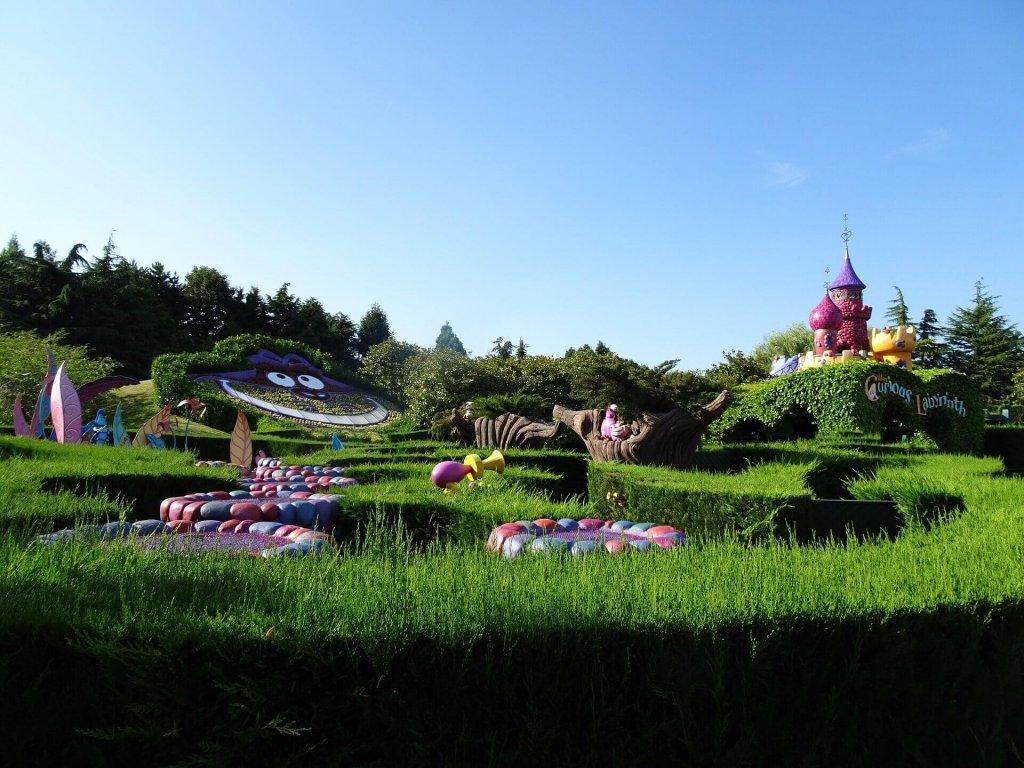 Labirinto Alice nel paese delle meraviglie disneyland paris